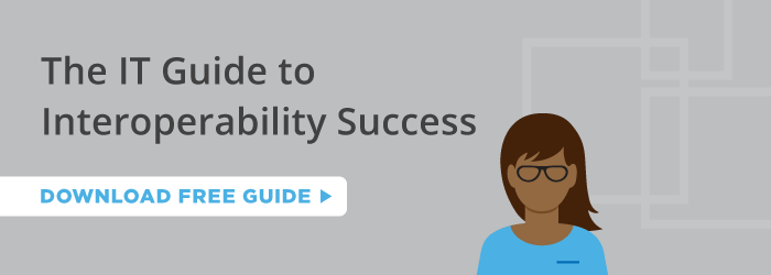 The IT Guide to Interoperability Success
